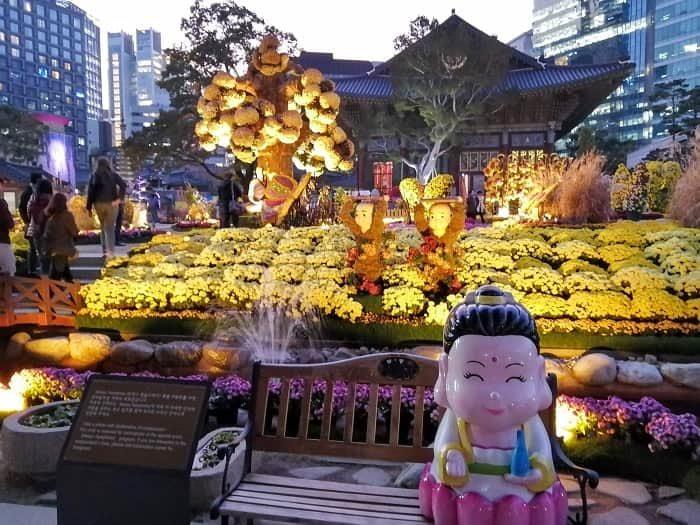 曹渓寺の菊祭り