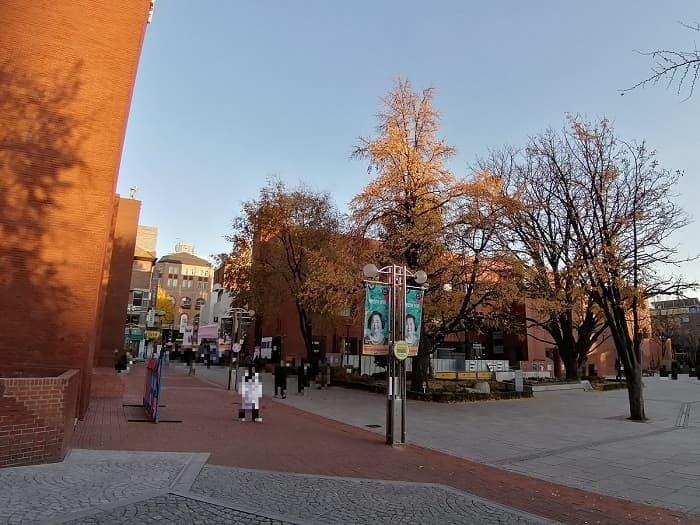 大学路(テハンノ)マロニエ公園