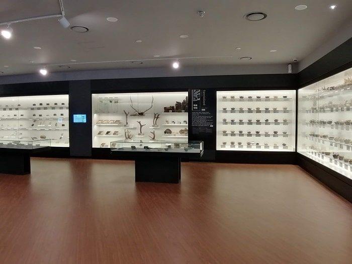 ソウル薬令市韓医薬博物館‗さまざまな韓方(韓国の漢方)薬材料