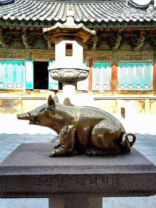 慶州(キョンジュ)極楽寺の豚