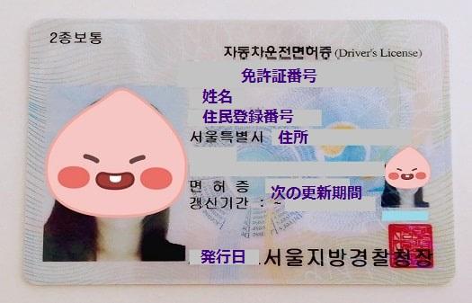 韓国の運転免許証には何が載ってる?