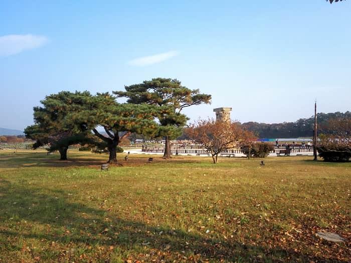 屋根のない博物館 慶州歴史遺跡地区