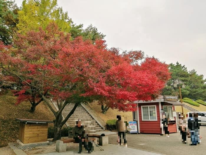 慶州市金庾信(キム・ユシン)将軍の墓、チケット売り場