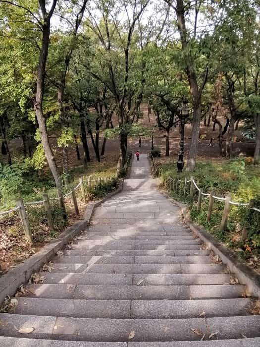 キョンジュ金庾信(キム・ユシン)将軍像のある小山の階段