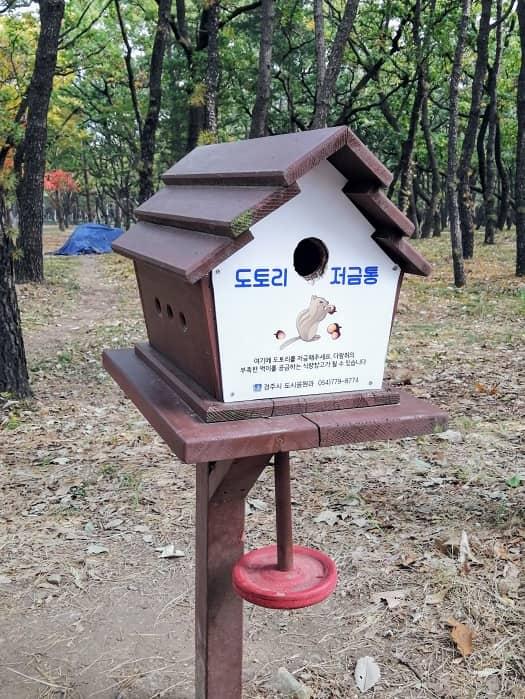 慶州(キョンジュ)隍城(ファンソン)公園のどんぐり貯金箱