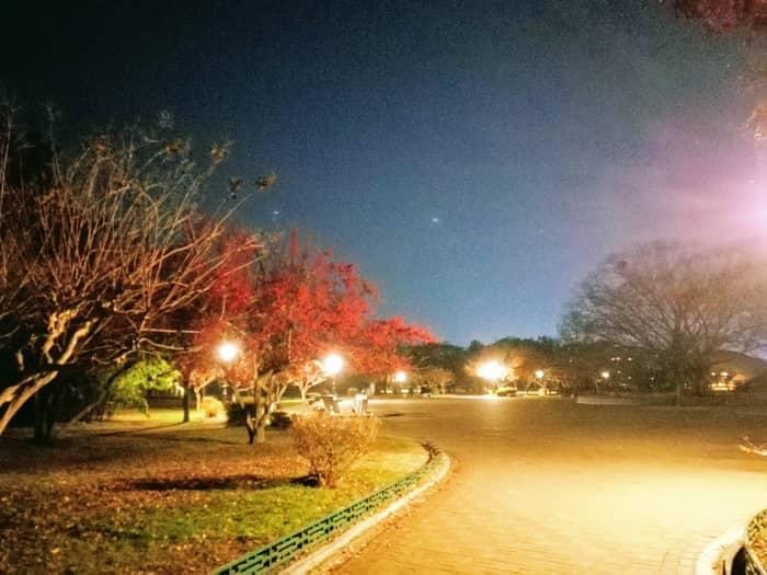 韓国慶州(キョンジュ)大陵苑(テヌンウォン)の夜景