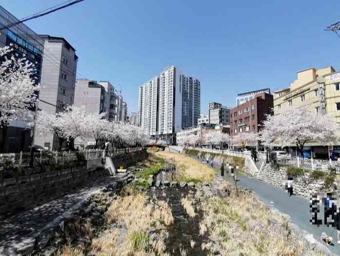 韓国チョンゲチョン歩道