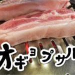 ソウルで食べるチェジュのオギョプサル:城北区庁店