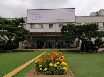 水際対策陰性証明書 韓国での取得方法 국립중앙의료원